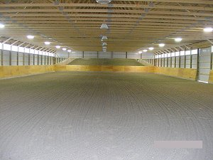 Horse Arena Indoor Riding