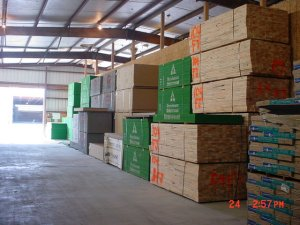 OSB CDX Plywood